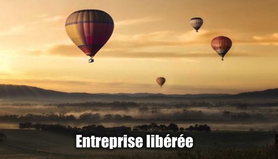Entreprise libérée ou entreprise structurée, quel est le meilleur choix pour votre entreprise commerciale ?